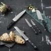 Lion Sabatier Pluton knivsæt 5 dele-030